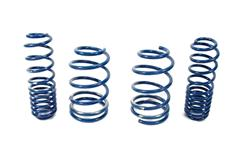 05-09 Mustang Lowering Springs Components