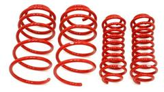 Mustang Lowering Springs (2010-2014)