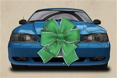 1994-04 Mustang Christmas Gift Top Picks