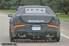 2015 SVT Mustang: Spy Photos Released! (S550)