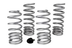 79-93 Mustang Lowering Springs & Components