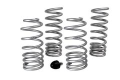 94-04 Mustang Lowering Springs & Components