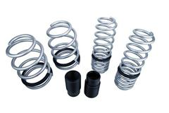 Mustang Lowering Springs